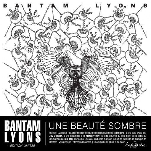 BANTAM-LYONS_Eponyme